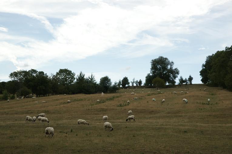 Cotswolds, nejkrásnější oblast Anglie, anglický venkov, cotswold stone, dovolená s dětmi