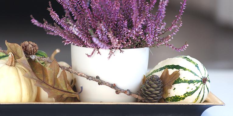 říjnové radosti, podzim, podzimní dekorace, dýně a vřes