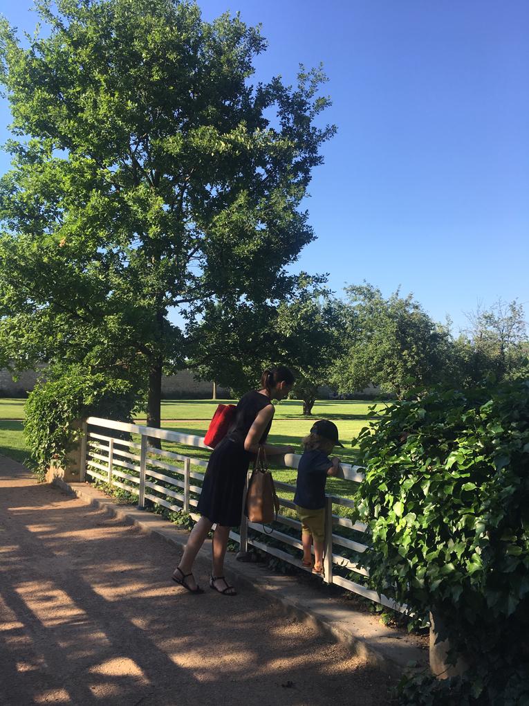 jak zabavit děti v létě, aktivity pro děti, kam s dětmi v Praze, zámecký park Ctěnice, piknik v Praze